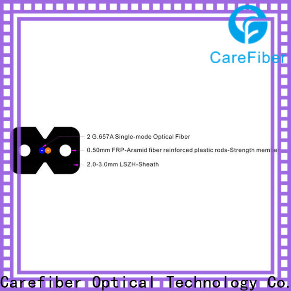 Carefiber variety of china fiber optic factory for communication