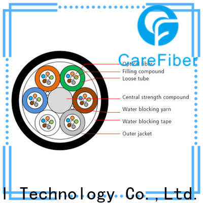 Carefiber standard types of optical fiber order online for importer